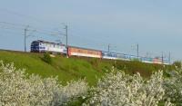 Centralna magistrala kolejowa